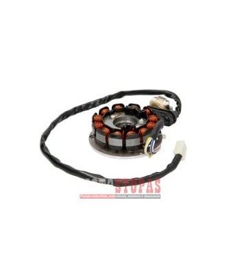 (Alternator stator AM6 12 coils)